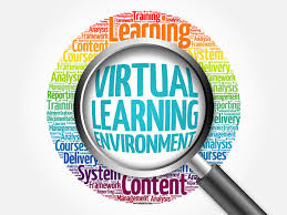Virtual Instruction Overview and Schedule