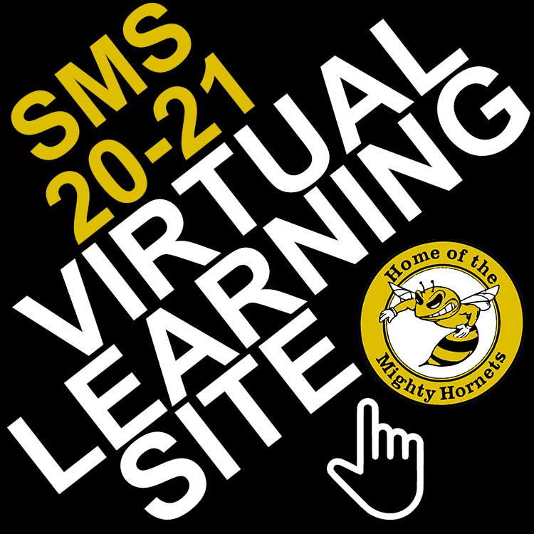 Virtual Learning Site